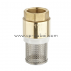 Brass Check Valve with Filter | Centre Point Hydraulic, Dubai