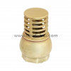 Brass Foot Valve | Centre Point Hydraulic in Dubai